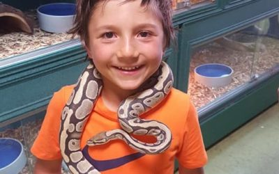 Teo Loves Tennis and Snakes